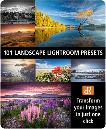 Check out the 101 Landscape Lightroom Presets collection from the Digital Photography School.