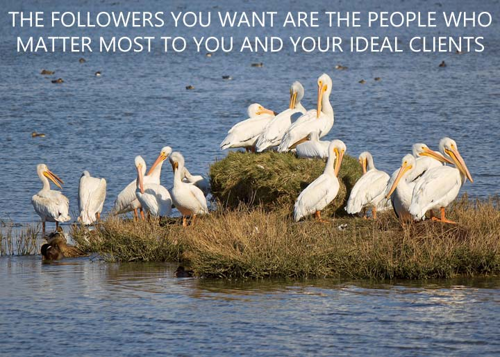 The Twitter followers you want are the people who matter most to you and your ideal clients...