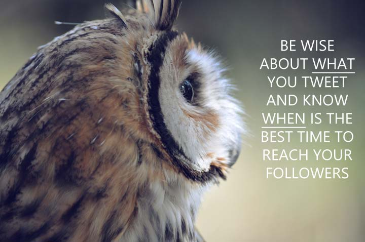 In your Twitter marketing, be wise about what you tweet, and know when is the best time to reach your followers...
